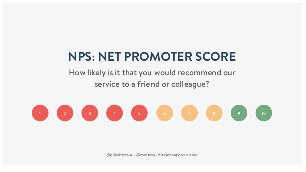 NPS-Survey